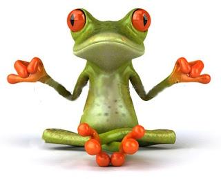 zen-frog-15436732
